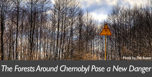 Chernobyl Forests Banner 2
