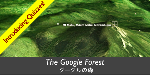 The Google Forest