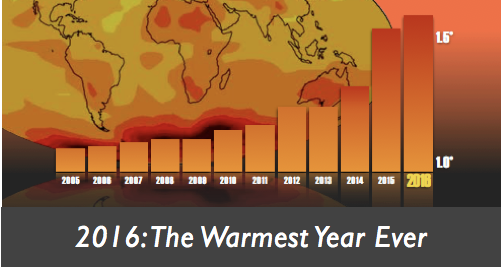 warmest year ever banner